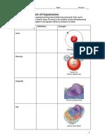 worksheet.levels_of_organization.pdf