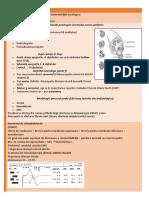 sistem nervos periferic.docx