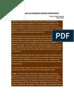 Dialnet-PerspectivasDelPasadoLaConquistaDelPeru-5145593