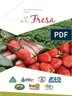 manual buenas practicas agricolas fresa.pdf