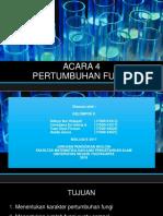 ACARA IV
