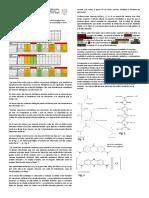 REDOX SDH-citocromo c Oxidasa