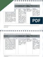 2010-04-07_RaportFinal_AuditulExternAlManagANI_2009_Part2.pdf