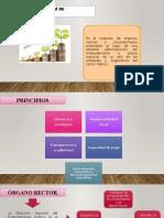 sistema-de-administracion-publica.pptx