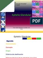 Epitelio Glandular Ale 2012 (1)