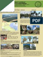 Bañado La Estrella FINAL.pdf