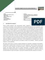 programacion-de-matematica.docx