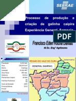 GalinhaCaipira_PEC_2015.pdf