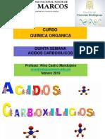 ACIDOS-CARBOXILICOS-nino-2019.ppt