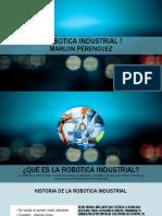 Robotica Industrial !