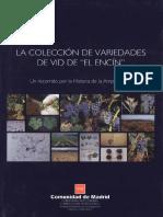 Colección_variedades.pdf