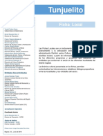 Ficha local Tunjuelito Junio 2018.pdf