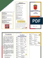 programadeanivfss-120525000922-phpapp01