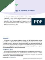 HISPATH-16-04.pdf