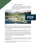 Laguna de Catemaco.docx