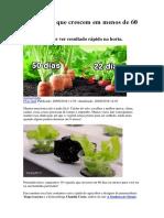 18 Vegetais que crescem em menos de 60 dias.docx