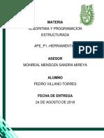 APE P1 ReporteVillanoTorres