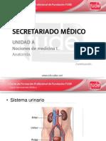 Clase 03 - Secretariado Medico