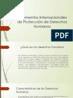 Intrumentos Internacionales de Protección de Derechos Humanos