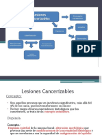 Cancerizables y Liquen.pdf
