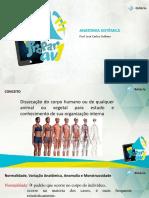 REVISANDO_ANATOMIA_SISTEMICA.pdf