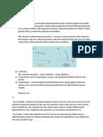 Respostas_Teóricas.docx