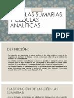 CÉDULAS SUMARIAS y Cédulas Analíticas