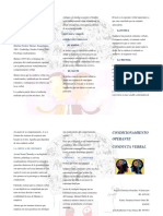 FOLLETO CONDICIONAMIENTO OPERANTE.docx