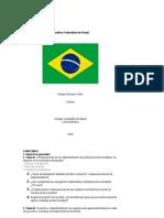 portafolio brasildocx.pdf