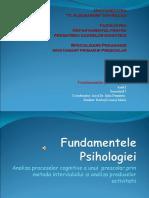 Fundamentele Psihologiei-analiza proceselor cognitive la prescolar