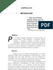 Capítulo VII - Metodologia