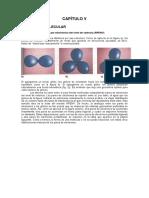 quimica semana_#5.pdf