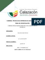 PLAN DE DESARROLLO Y PLAN DEL BUEN VIVIR.docx