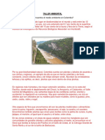 TALLER AMBIENTAL.docx