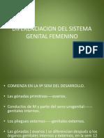 sistema genital2.ppt