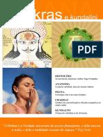 259158612-Prana-Chakras-e-Kundalini.pdf