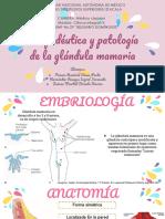 Propedeutica y Patologia de Mama
