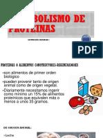 Metabolismo de Proteinasnutri (1)