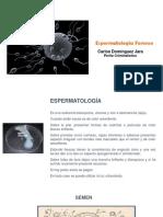 Espermatologia.pdf