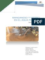 Hierro y manganeso.docx