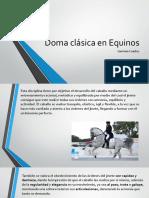 Doma Clásica en Equinos