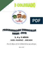 PLANIFICACIÓN CURRICULAR Completo 2019 RED 1.docx