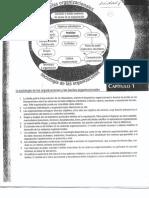 Organizaciones-Krieger-Cap-1.pdf
