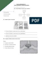 Guía de trabajo historia n°1.docx