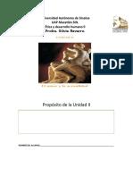 portafolio II.docx