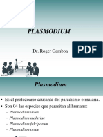Esporozoarios 2 Plasmodium y Toxoplasma