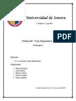 Reporte - Práctica 1.docx
