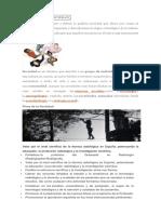 DEFINICIÓN DESOCIEDAD.docx