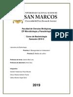 informe 1 y 2.docx