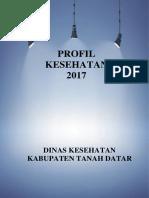 1305_Sumbar_Kab_Tanah_Datar_2017.pdf
